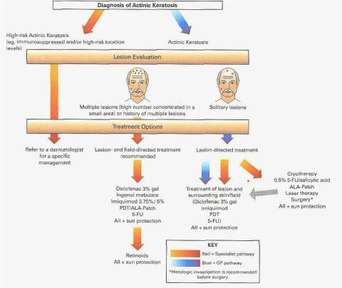Processo de queratose actinica