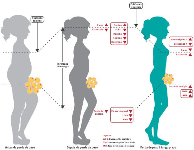 polifenois na perda de peso