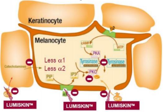 mecanismo de ação Lumiskin